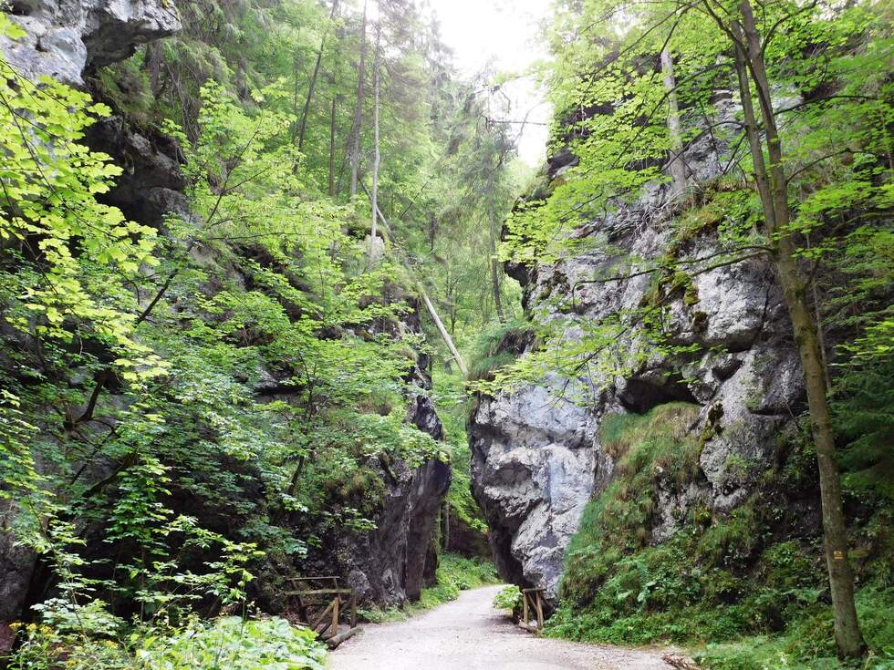Hrad Blatnica a Gaderská Dolina