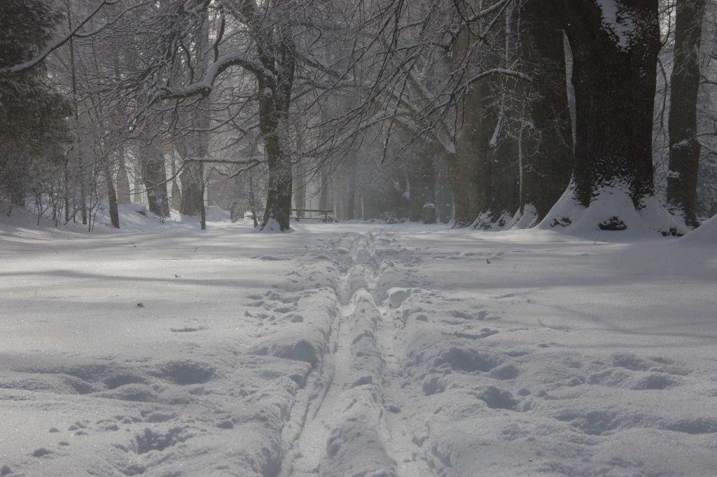 Kúpeľný park zima Turčianske Teplice